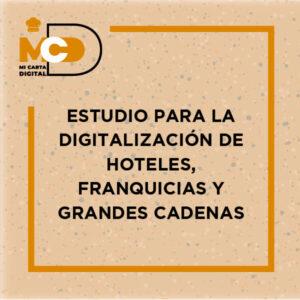 Estudio para la digitalización de Hoteles, Franquicias y grandes cadenas-15