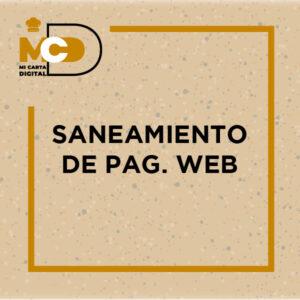 Saneamiento de pag. Web